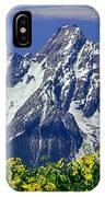 1m9224-mt. Moran  IPhone Case