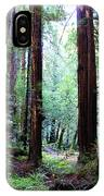 Muir Woods 1 IPhone Case