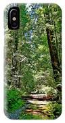Muir Woods Study 22 IPhone Case