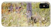 Mule Deer Doe In The Pike National Forest IPhone Case