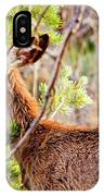 Mule Deer Foraging On Pine On A Colorado Spring Afternoon IPhone Case