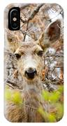 Mule Deer Portrait In The Pike National Forest IPhone Case