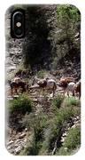 Mule Train IPhone Case