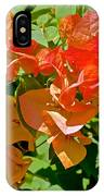 Multi-colored Bougainvillea At Pilgrim Place In Claremont-california  IPhone Case