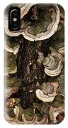 Mushroom Shells By The Lake Shore IPhone Case