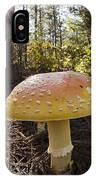 Mushroom Toadstool IPhone Case