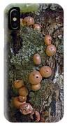 Mushroom Tree Trunk IPhone Case