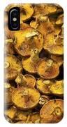 Mushrooms In Spain IPhone Case