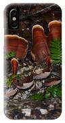 Mushrooms,log And Ferns IPhone Case