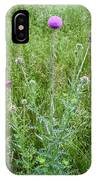 Musk Thistle In Full Glory IPhone Case
