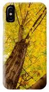 My Maple Tree IPhone Case