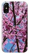 My Redbuds In Bloom IPhone Case