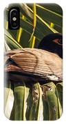 Myna In The Palms IPhone Case