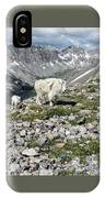 Nanny And Kid Goat #2 IPhone Case