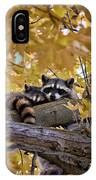Napping Bandits IPhone Case