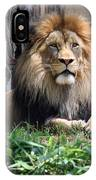 National Zoo - Luke - African Lion IPhone Case