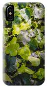 Nature Abstract 5 IPhone Case