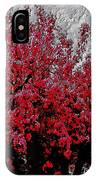Nature As Art IPhone Case