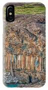 Nature Carvings IPhone Case