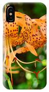 Nature Floral Orange Tiger Lily Flowers Baslee Troutman IPhone Case