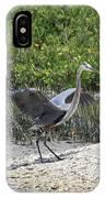 Nature In Florida IPhone Case