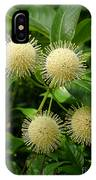 Nature In The Wild - Pin Cushions Of Nature IPhone Case