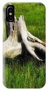 Natures Artwork IPhone Case