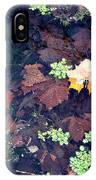 Natures Canvas IPhone Case