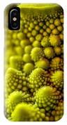 Nature's Fractals IPhone Case