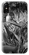 Nepenthe Bird Of Paradise B And W IPhone Case