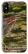 Nervous Green Heron IPhone Case