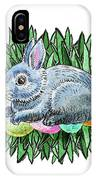 Nesting Easter Bunny IPhone Case