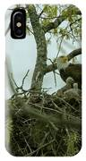 Nestlings IPhone Case