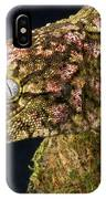New Caledonian Giant Gecko IPhone Case