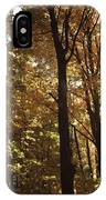 New England Autumn Forest IPhone Case