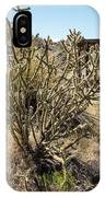 New Mexico Cholla IPhone Case