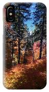 New Mexico Foliage IPhone Case