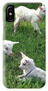 Newborn Goats IPhone Case