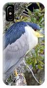 Night Heron IPhone Case
