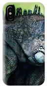 Night Of The Iguana IPhone Case