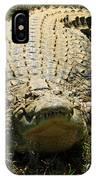 Nile Crocodile - Africa IPhone Case