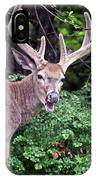 No It Is Not Hunting Season IPhone Case