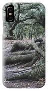 Norfolk Trees IPhone Case