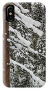 North Cascades Forest IPhone Case