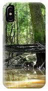 North West Florida Swamp IPhone Case