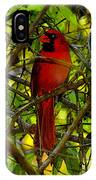Northern Cardinal Work Number Two IPhone Case