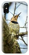 Northern Flicker - Woodpecker IPhone Case