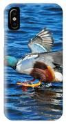 Northern Shoveler Duck Landing IPhone Case