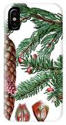 Norway Spruce, Pinus Abies IPhone Case