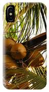 Nuts On Tree  IPhone Case